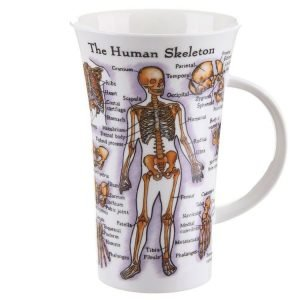 Skeletal Anatomy Mug for Medical Students
